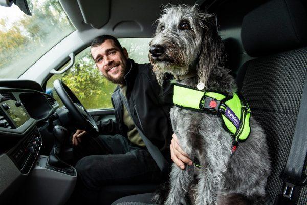 van drivers - driver and dog